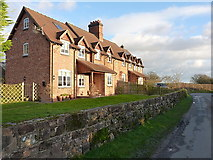 SJ7822 : Terrace of cottages south of Oulton by Richard Law
