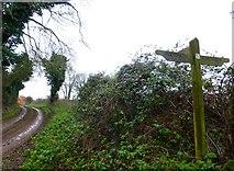 SU6615 : Footpath near Glidden Farm seen from path junction by Shazz