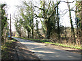 TM1897 : Norwich Road past Flordon Common by Evelyn Simak