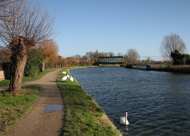 The Cam at Chesterton: swans, sunshine and the railway bridge