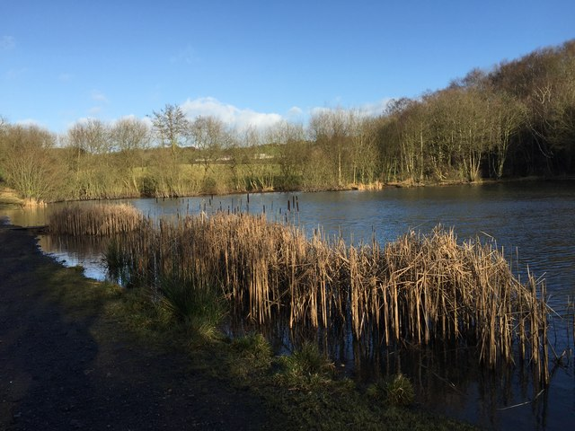 Apedale Country Park: Burley Pools