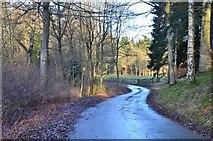 NT4227 : Estate road near Weatherhouse by Jim Barton
