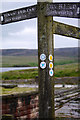 SD9431 : Pennine Bridleway signpost at Gorple Lower Reservoir by Phil Champion