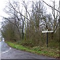 ST1211 : Hemyock Common: woodland and an old signpost by David Smith