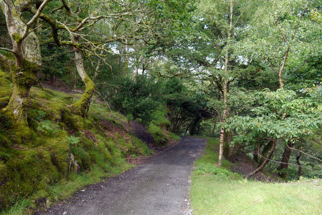 Track down to the lower camping fields at Graig Wen
