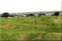 N9159 : Earthworks on the Hill of Tara by Clint Mann