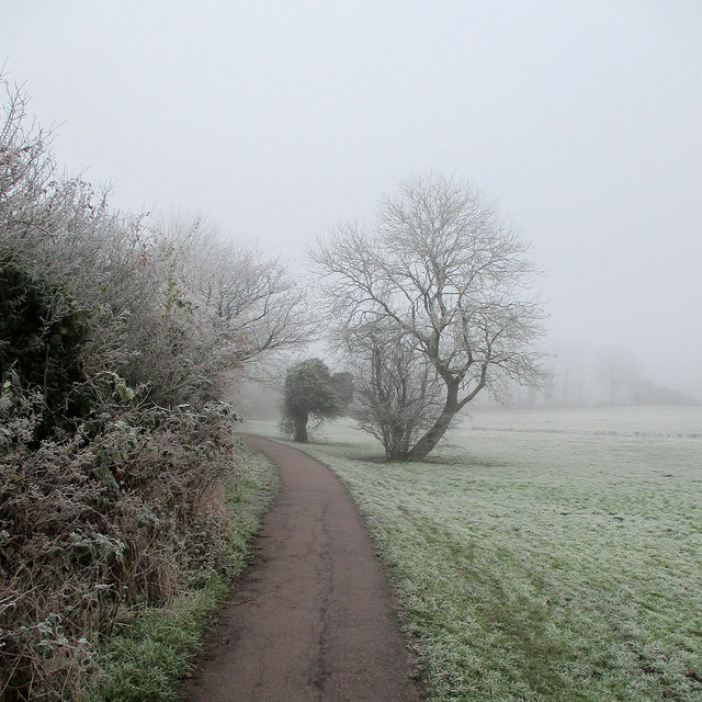 Near Newnham on a January morning