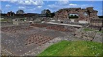 SJ5608 : Wroxeter Roman City: Viroconium by Michael Garlick