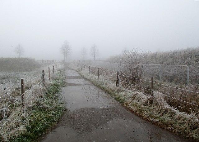 Footpath in the fog