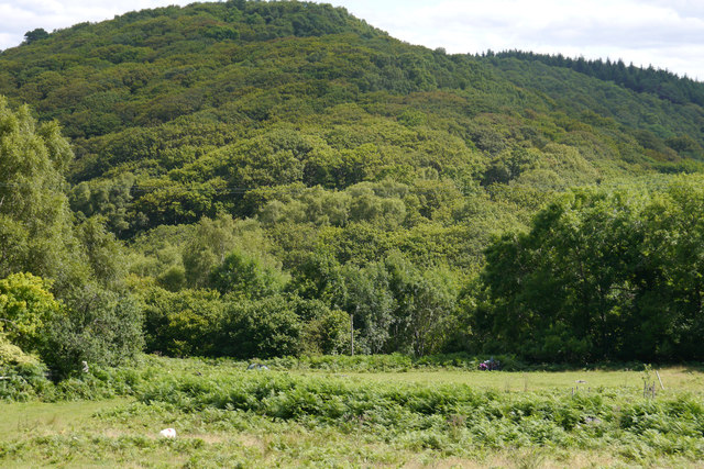 View towards Coed-y-garth from the lower camping fields at Graig Wen