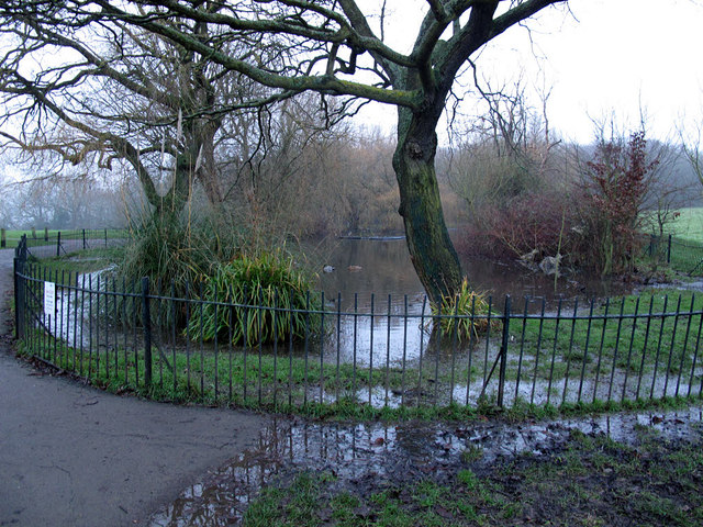 The Long Pond in Eltham Park, overflowing