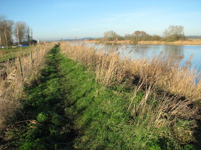 The Wherryman's Way to Langley Dyke