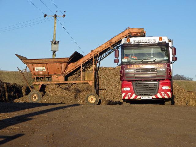 Loading Beet near Melton Ross