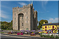 R4560 : Bunratty Castle and Durty Nelly's by Ian Capper