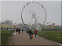 TQ2780 : Ferris wheel, Hyde Park Winter Wonderland by David Hawgood