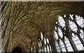 SO8318 : Gloucester Cathedral: The Cloisters by Michael Garlick