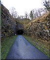 SK1672 : Litton tunnel coming up on the Monsal Trail by Steve  Fareham