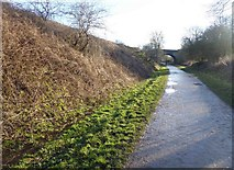 SK2169 : Next stop Bakewell on the Monsal Trail (and the Sun's come out) by Steve  Fareham