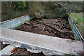 SX5550 : Disused swimming Pool by jeff collins