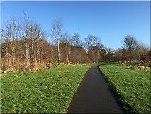 SJ8545 : Lyme Valley Park: footpath by Jonathan Hutchins