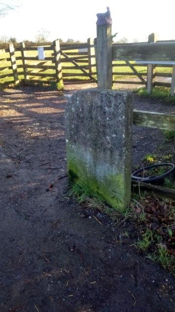 Benchmark, Stone Down Lane, Glastonbury