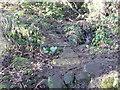 SE0720 : Elland FP51 crossing a stream by Humphrey Bolton