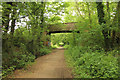 SK5351 : Linby Trail by Richard Croft