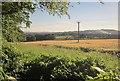 SX4571 : Barley near Morwell Barton by Derek Harper
