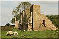 TF1468 : Tupholme Abbey by Richard Croft