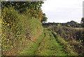 TG0410 : Colegate Lane by N Chadwick