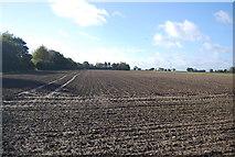 TG0509 : Farmland south of Colegate Lane by N Chadwick