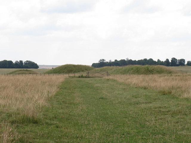 Tumulus group near Stonehenge