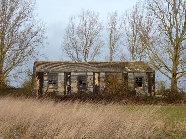 Decrepit shed near Castle Camps