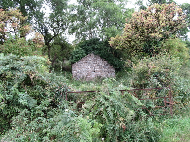 Ruined house in an overgrown garden at the junction of Cranny Road and an unnamed laneway