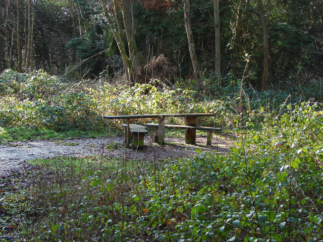 Picnic table, Ambarrow Court