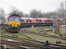 SU5290 : Line of Trains by Bill Nicholls