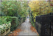 TL4558 : Footpath to Parker's Piece by N Chadwick
