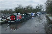 SP1671 : Stratford Canal above Drawbridge Farm Bridge by Stephen McKay