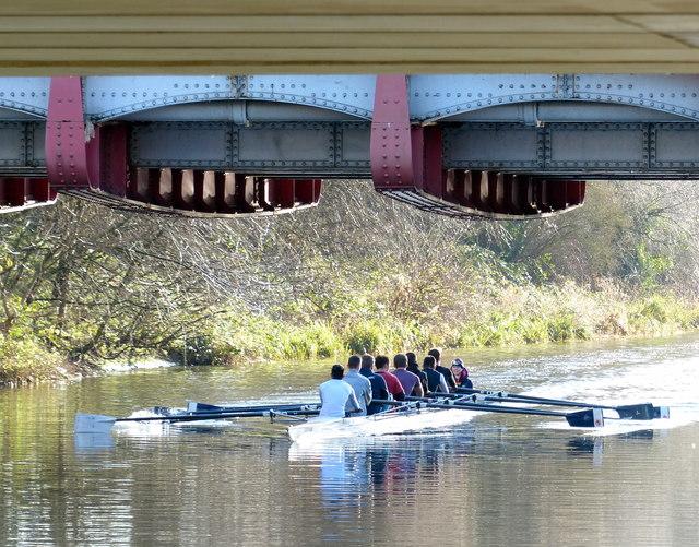 Rowers passing under the Upperton Road bridge