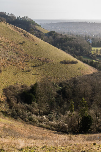 The Horseshoe, Colley Hill