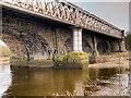 SD5328 : River Ribble, North Union Railway Bridge by David Dixon