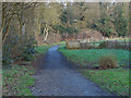 TQ0486 : Denham Country Park by Alan Hunt