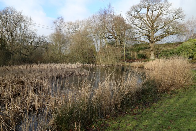 Northland Farm pond