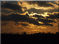 TQ3977 : Winter sun over Blackheath  by Stephen Craven