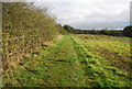 TM2447 : Fynn Valley Walk by the A12 by N Chadwick