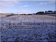 NJ6102 : A wintry view across a field of stubble by Stanley Howe