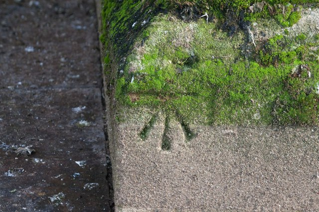 Benchmark, west face, Wells Cathedral