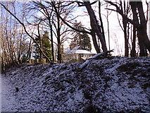 NJ6102 : Deeside Railway path enters a wooded cutting behind Beltie Road houses by Stanley Howe