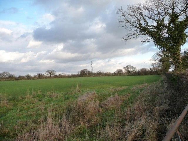Farmland north of Crowder's Lane [3]