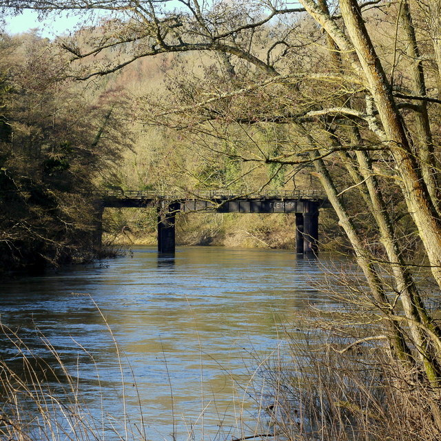 A winter walk along the riverbank, 13
